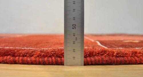詳細の写真1: アメレ/リビングサイズ238×170cm